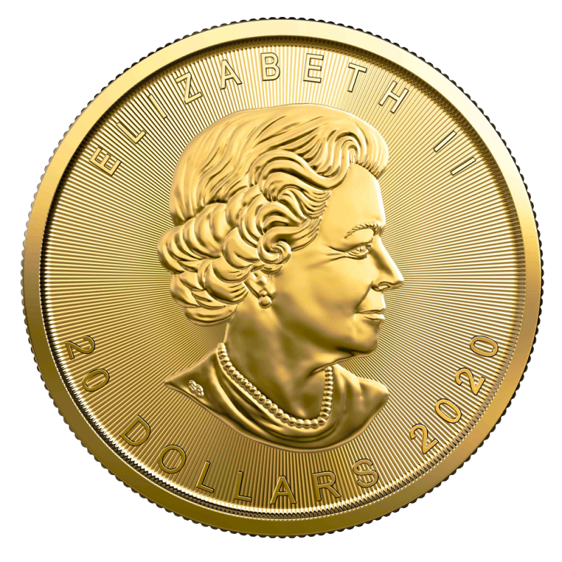 1 2 Oz Maple Leaf 2020 Gold Coin Bitgild
